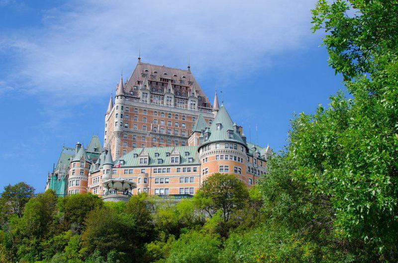 Arbres de Québec