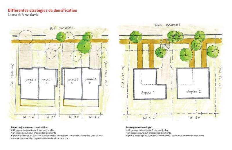 Proposition de Vivre en ville pour sauvegarder les arbres de la rue Barrin