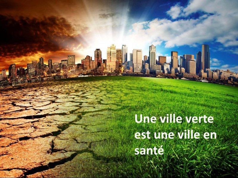 ville-verte-conference-sur-l-importance-des-arbres-2015