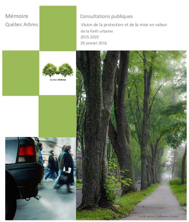 memoire-vision-de-l-arbre-Vision-de-la-protection-et-de-la-mise-en-valeur-de-la-foret-urbaine