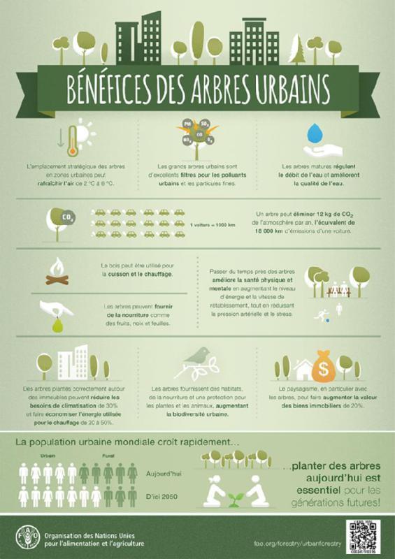 bénéfices des arbres urbains